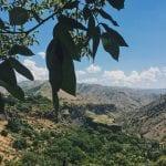 Армения 5